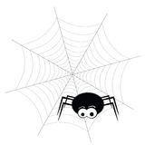 Spider and web vector Stock Images