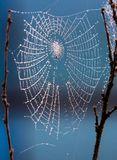 Spider Web, Water, Sky, Atmosphere Of Earth Stock Photography
