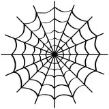 Spider web on white. Stock Photo