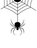 Spider Webs. Isolated spider web wit spider illustration. vector format available Royalty Free Stock Photo