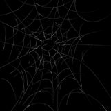 Spider Webs Royalty Free Stock Images