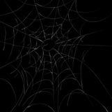 Spider Webs. A spider web illustration on dark background vector illustration