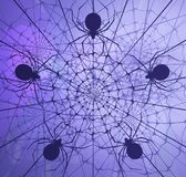 Spider Webs Light Abstract. Spider webs shadow, blue purple color light abstract 3d illustration, horizontal Stock Photos