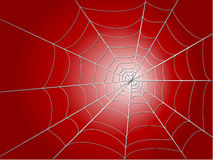 Spider wed. On red background  illustration Stock Photos