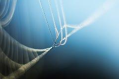 Spider& x27 Ιστός του s, πτώσεις του νερού Στοκ Εικόνα
