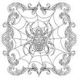 Spider zentangle coloring page Royalty Free Stock Photo