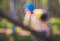 Spiderboy 免版税库存照片