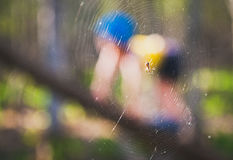 Spiderboy Royalty Free Stock Photos