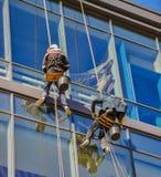 Spiderman som tvättar Windows Arkivbilder