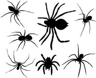 Spiders. Spider silhouettes collection -  illustration Stock Images