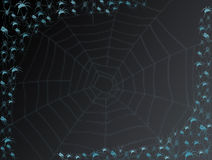Free Spiders And Cobweb Stock Photos - 8296253