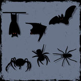 Spiders and bats Royalty Free Stock Photo