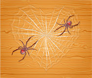 Spiders with heart. Illustration 10 version Stock Photos