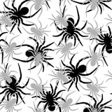 Spiders pattern Stock Photography