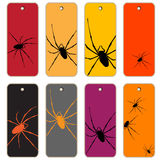 Spiders price tags Stock Photography