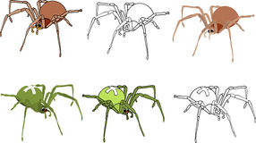 Spiders  set Royalty Free Stock Photo