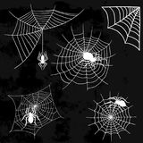 Spiders vector web silhouette spooky spider nature halloween element cobweb decoration fear spooky net. Spiders and spider web silhouette spooky nature Stock Image