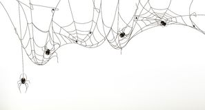 Spiders and spider web. Vector illustration,  on white background Stock Photo