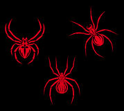 Spiders tattoo Royalty Free Stock Images