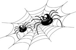 Spiders on web. Stock Photography