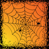 Spiders on the web Royalty Free Stock Images