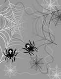 Spiders in web. Two black spiders in web Stock Photo