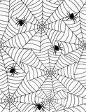 Spiders in web Stock Image