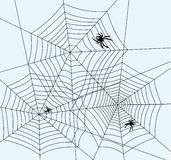 Spiders and webs. Illustration of spiders and webs, vector Royalty Free Stock Photo
