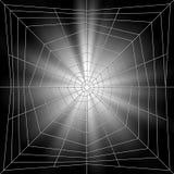spiderweb иллюстрации Стоковое Фото