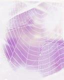 Spiderweb stock afbeeldingen