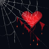 Spiderweb. The heart has got tangled in the spiderweb Royalty Free Stock Photography