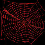 Spiderweb illustration stock
