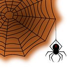 Spiderweb Fotografia de Stock Royalty Free