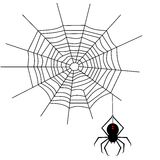 Spiderweb. Illustration of a spiderweb and black widow spider Royalty Free Stock Photos