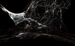 Spiderweb abstrato no fundo preto Fotografia de Stock Royalty Free