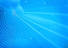 Spiderweb background Royalty Free Stock Photos