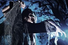 Spiderweb. Bloodthirsty zombi standing at the night cemetery in the mist and moonlight Stock Photography