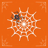 Spiderweb / Cobweb icon vector Royalty Free Stock Images