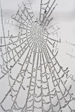 Spiderweb congelato Fotografia Stock