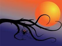 Spiderweb e lua Ilustração do Vetor