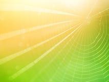 Spiderweb-Hintergrund Lizenzfreies Stockfoto