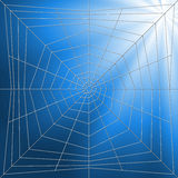 Spiderweb Illustration Royalty Free Stock Photo