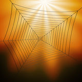 Spiderweb Illustration Royalty Free Stock Image