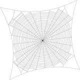 spiderweb Isolato su priorità bassa bianca Illustra del profilo di vettore Fotografia Stock Libera da Diritti