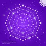 The spiderweb and network geometric art concept stock photography