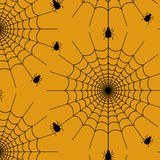Spiderweb pattern Royalty Free Stock Photo