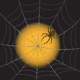 A Spiderweb with Spider. A Spider Web with Spider on moonlight background. Vector Illustration Royalty Free Stock Photo
