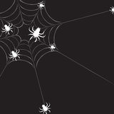 Spiderweb with spiders. Drawn in illustrator Royalty Free Stock Images