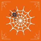Spiderweb/spindelnätsymbolsvektor Royaltyfria Bilder