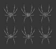 Spiderweb theme. Graphic art design illustration Stock Photography